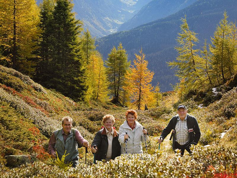 Herbst im Bergland